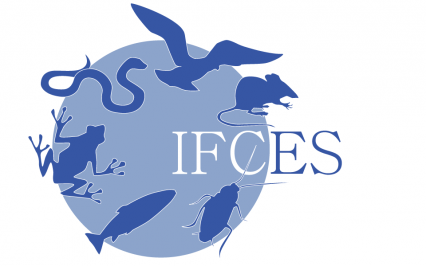 Logo IFCES | Francesca Panatta Illustration